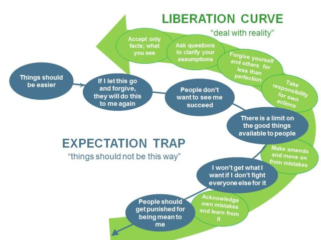 Expectations and Reality Curves