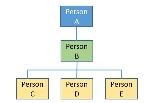 persons org chart for activity