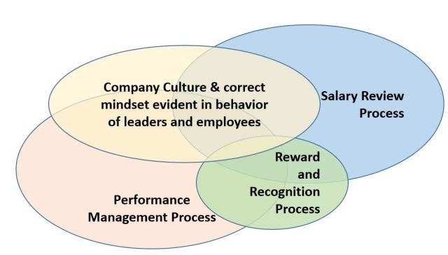 performance and reward processes